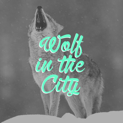 typographie-free-wolf-in-the-city_2