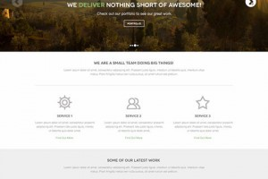 10-templates-site-PSD_12