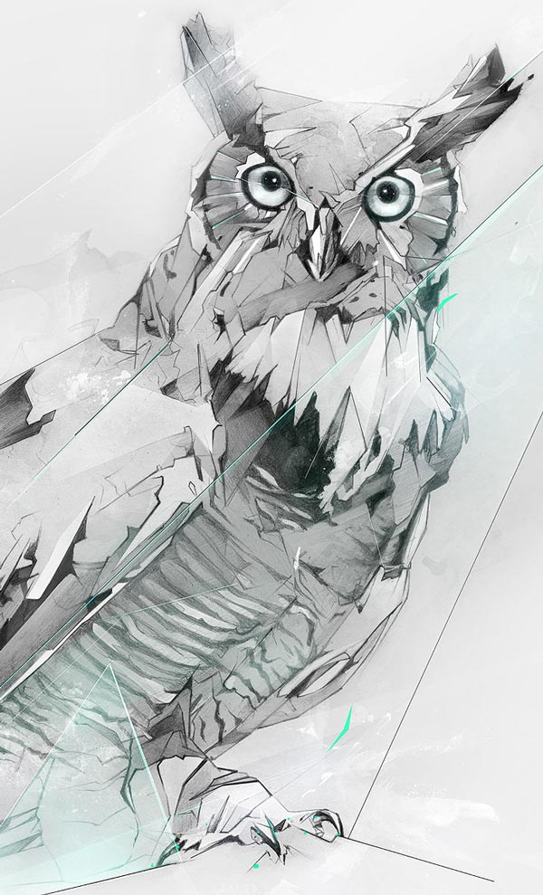 Superbes illustrations d 39 un hibou grand duc par alexis marcou - Dessin hibou grand duc ...