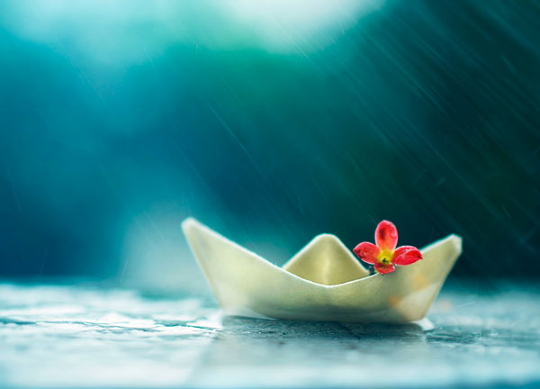 photo-Ashraful-Arefin_11