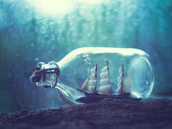 photo-Ashraful-Arefin_12