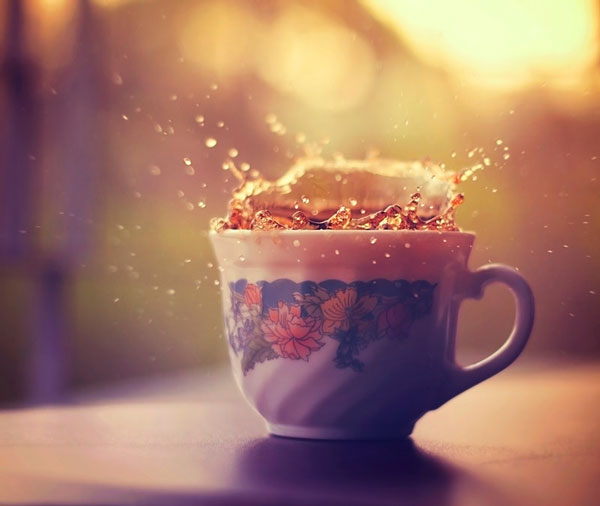 photo-Ashraful-Arefin_8