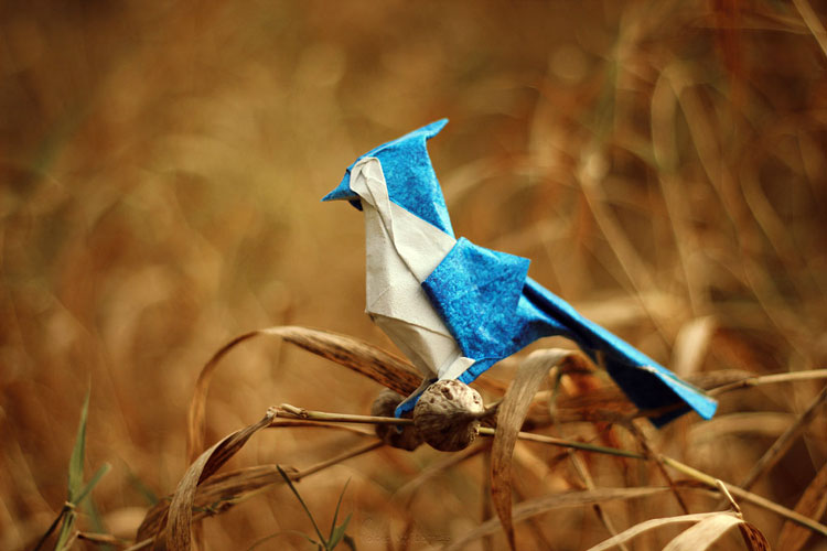 animaux-cute-origami_14