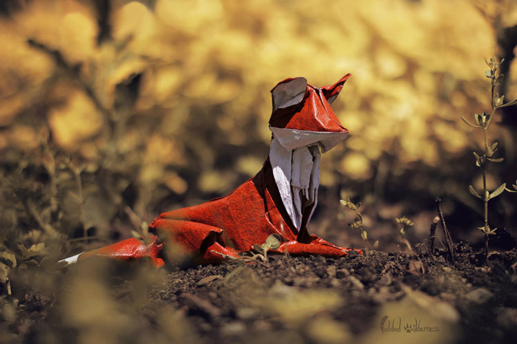 animaux-cute-origami_5