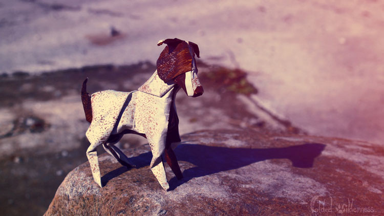 animaux-cute-origami_8