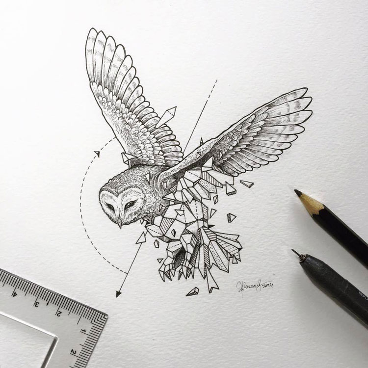 Geometric-Beasts-illustrations-10