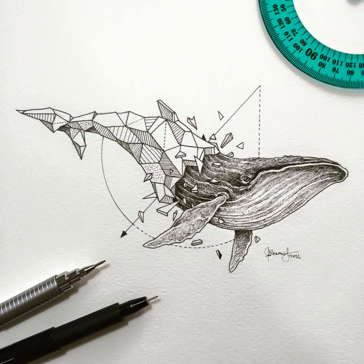 Geometric-Beasts-illustrations-4