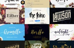 bundle-pack-44-typographies_thumb