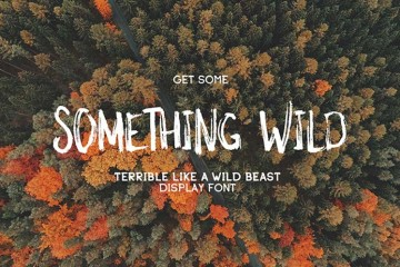 typo-gratuite-something-wild_1