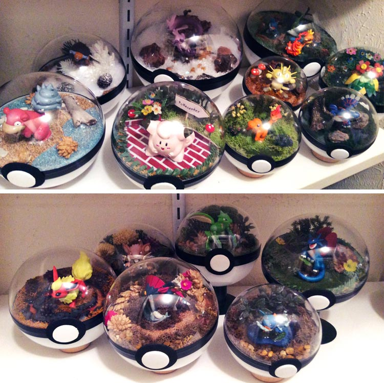 Pokeballs-terrarium-Pokemon_0