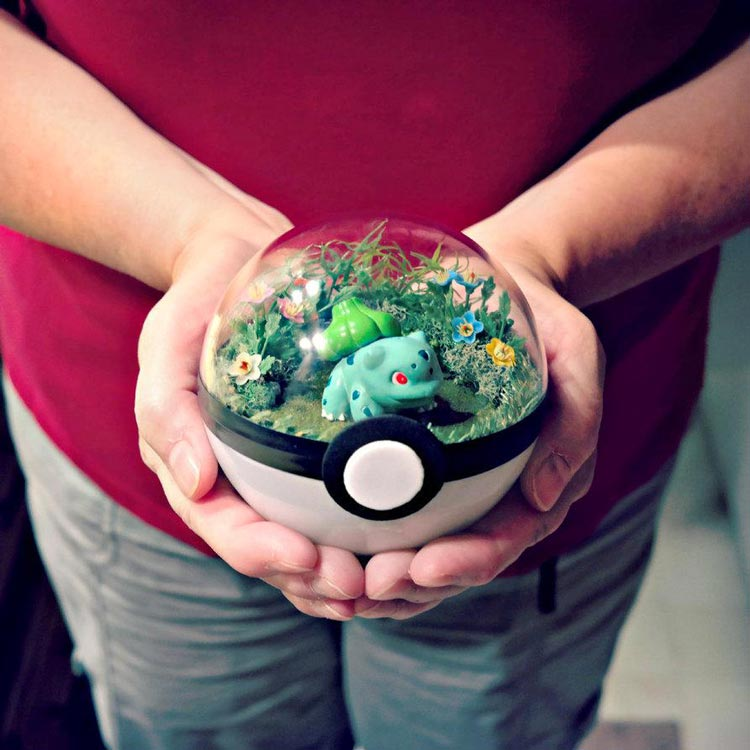 Pokeballs-terrarium-Pokemon_1