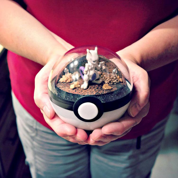Pokeballs-terrarium-Pokemon_10
