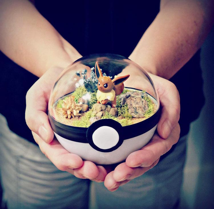 Pokeballs-terrarium-Pokemon_2