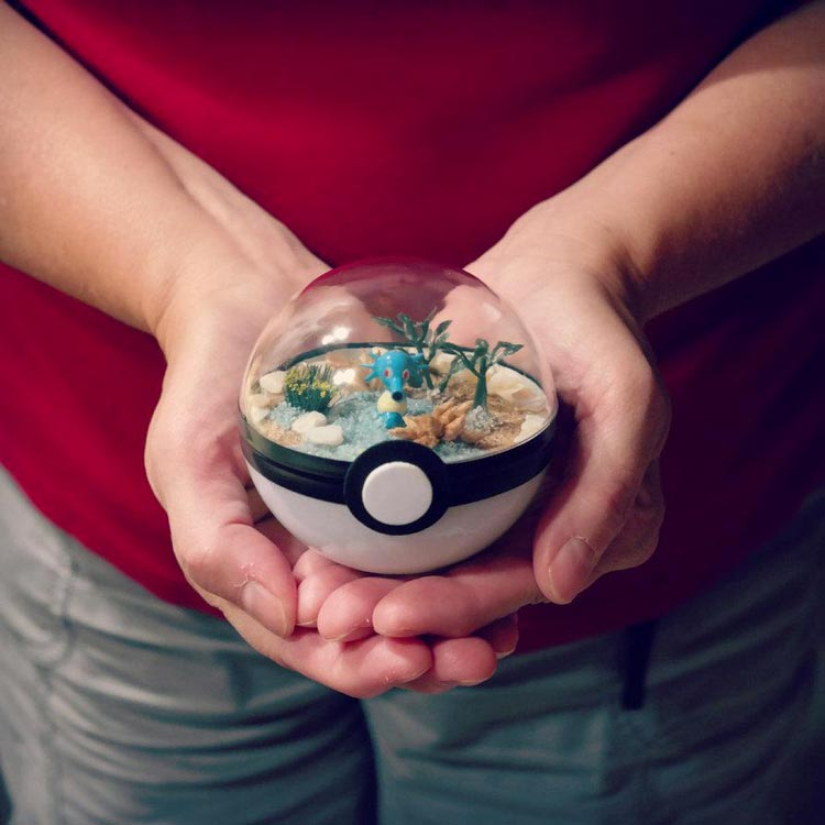 Pokeballs-terrarium-Pokemon_3