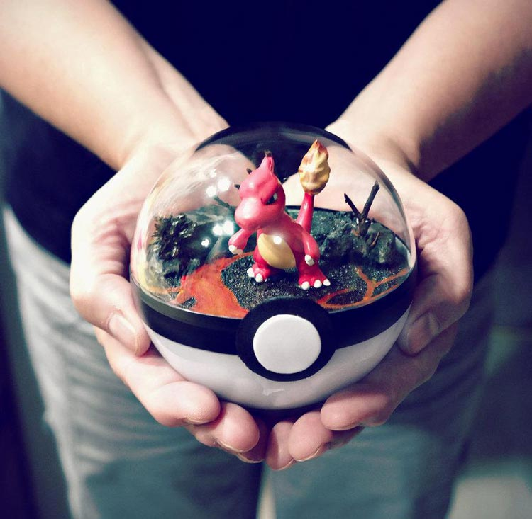 Pokeballs-terrarium-Pokemon_4