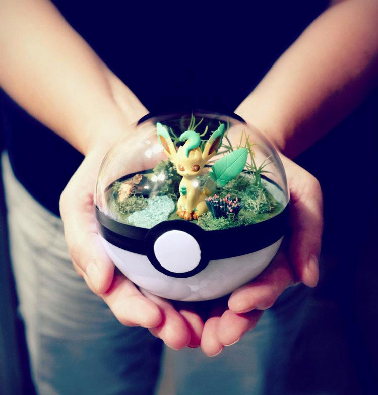 Pokeballs-terrarium-Pokemon_5