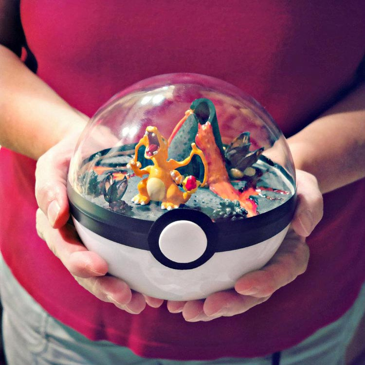 Pokeballs-terrarium-Pokemon_6