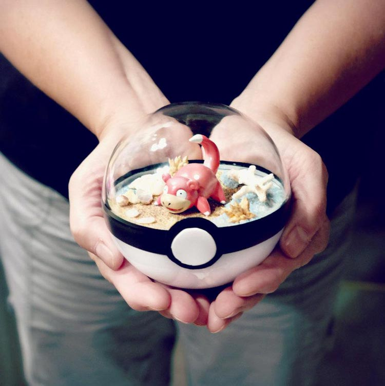 Pokeballs-terrarium-Pokemon_8